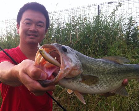 日曜日の知多野池テスト釣行