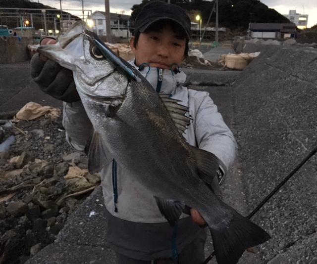 全身狩漁本能