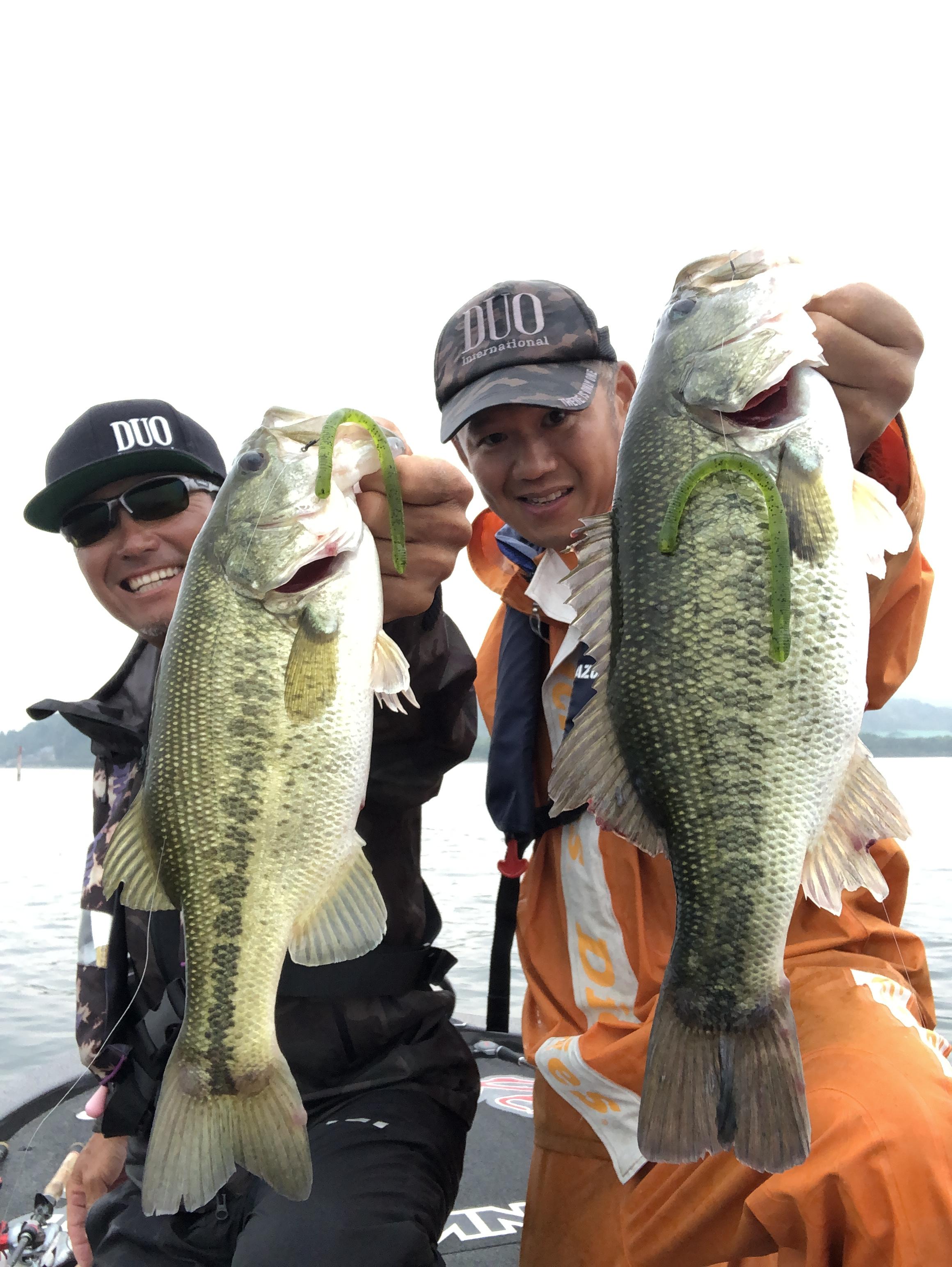 本日の琵琶湖!