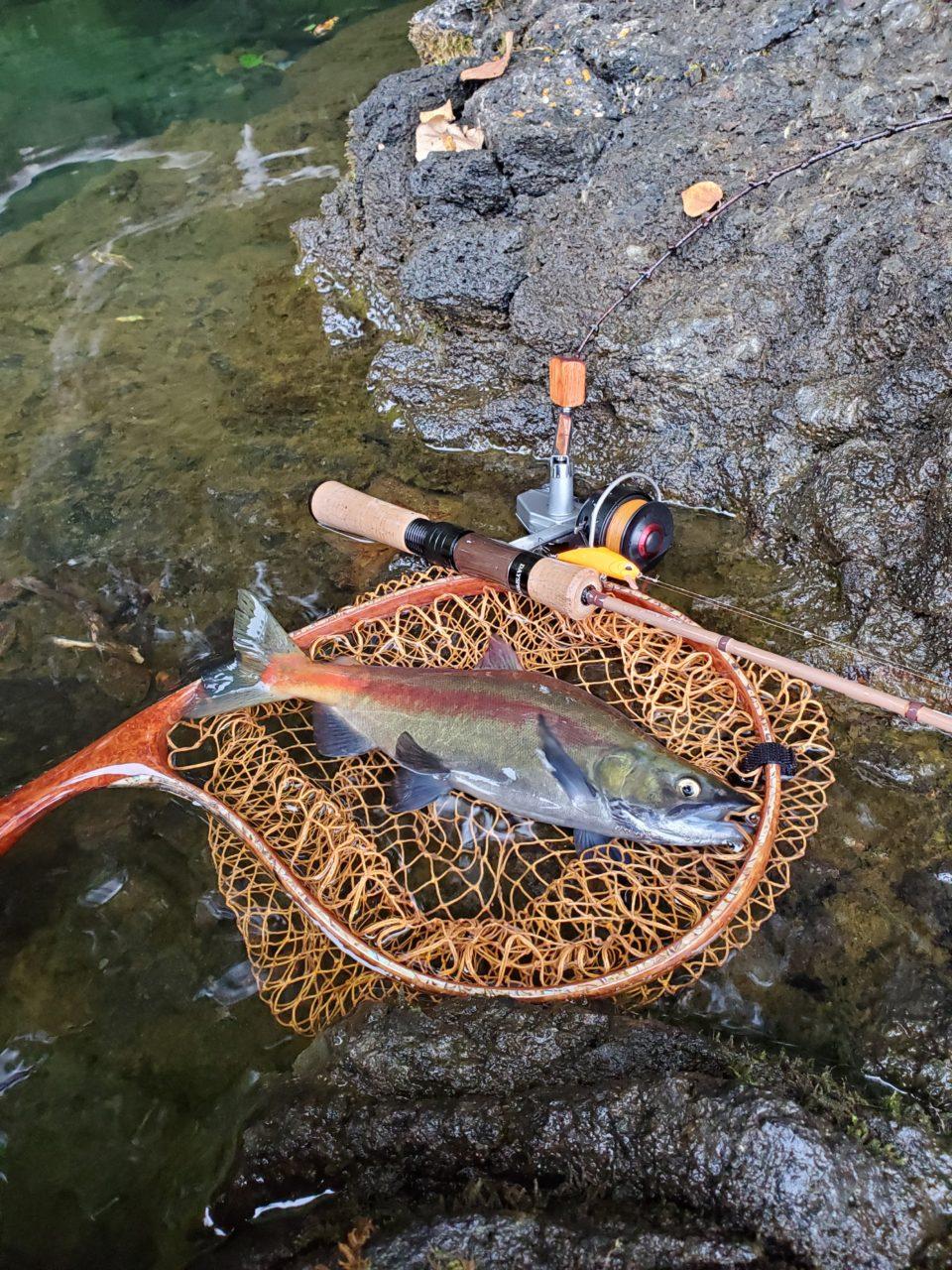 十和田湖2019レポート