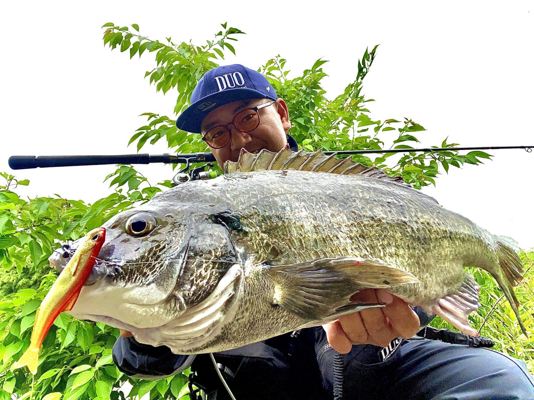 REALIS NOMASE小魚SWの釣果レポート